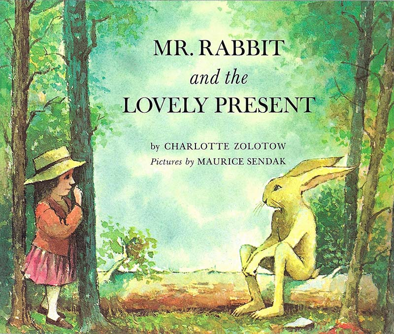 Mr Rabbit And The Lovely Present - Jacket