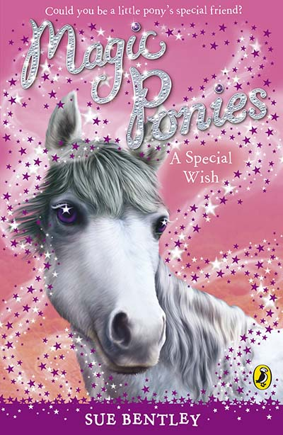 Magic Ponies: A Special Wish - Jacket