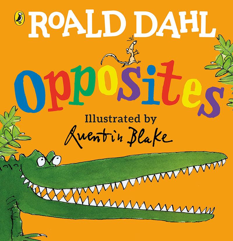 Roald Dahl's Opposites - Jacket