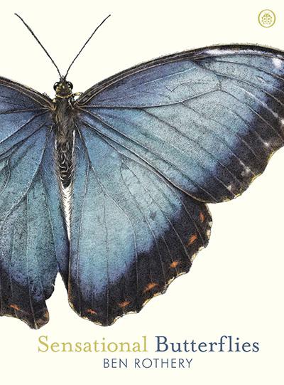 Sensational Butterflies - Jacket