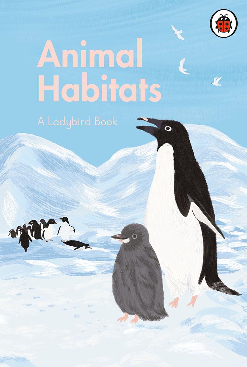 A Ladybird Book: Animal Habitats - Jacket