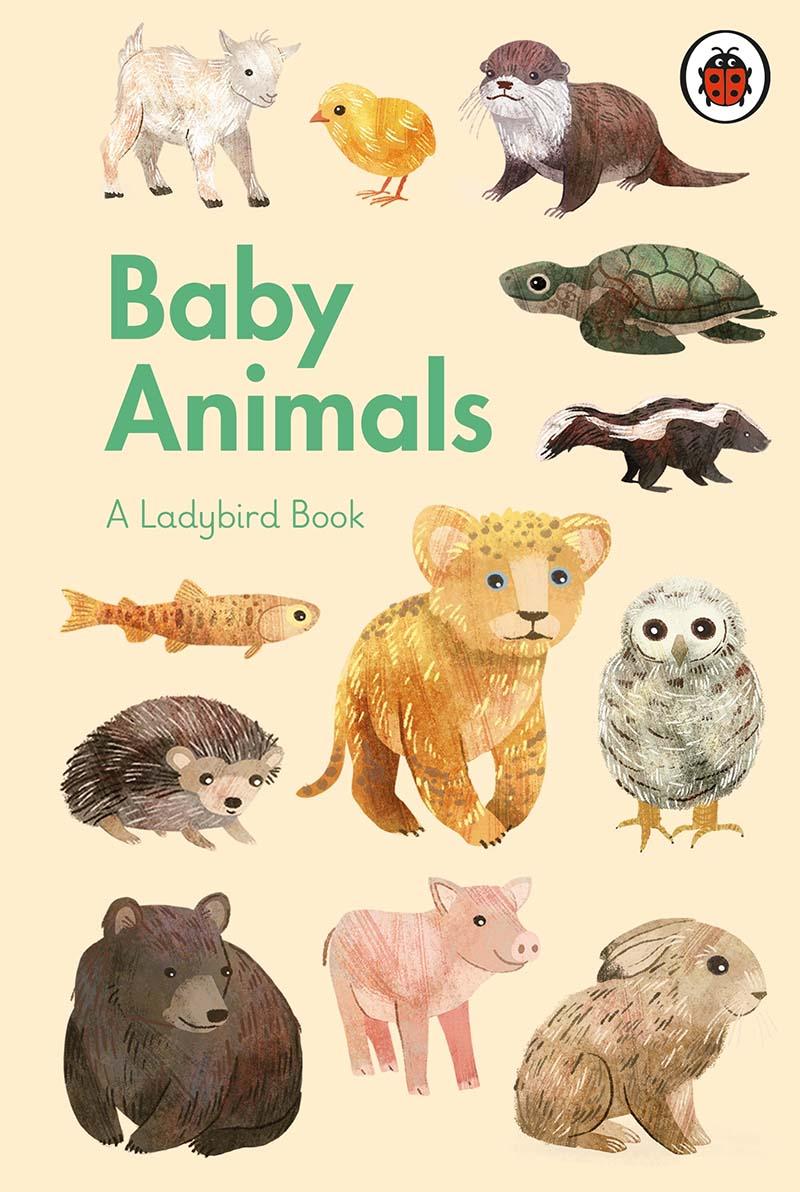 A Ladybird Book: Baby Animals - Jacket