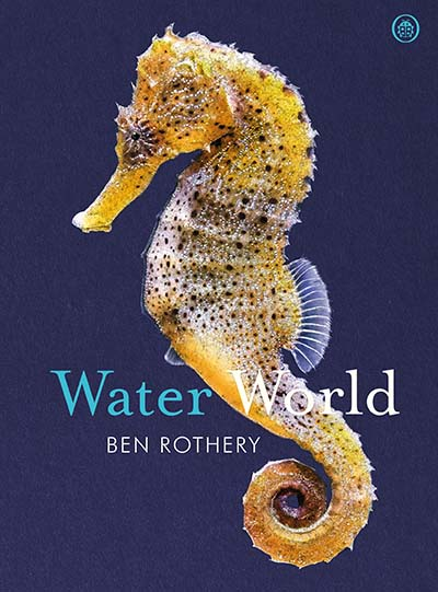 Water World - Jacket