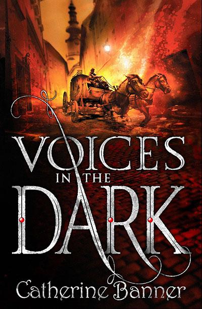 Voices in the Dark - Jacket