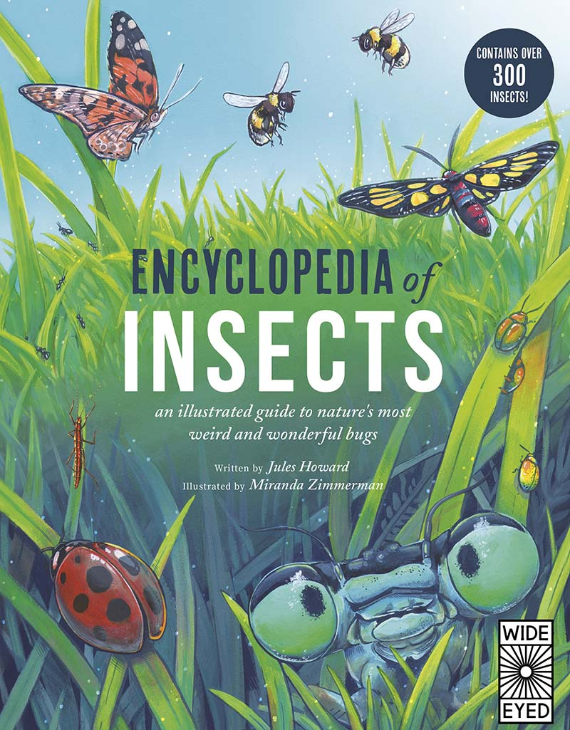 Encyclopedia of Insects - Jacket