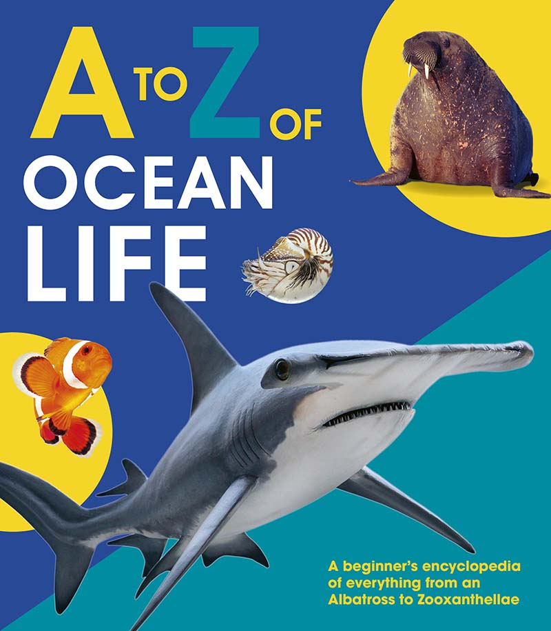 A to Z of Ocean Life - Jacket