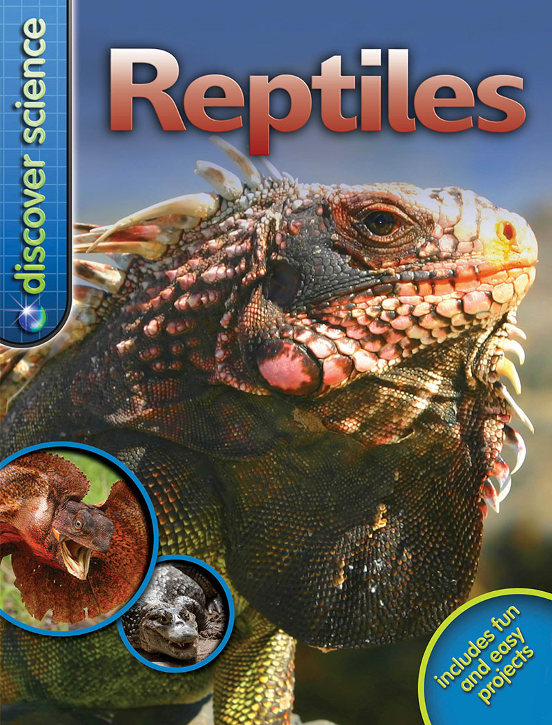 Discover Science: Reptiles - Jacket