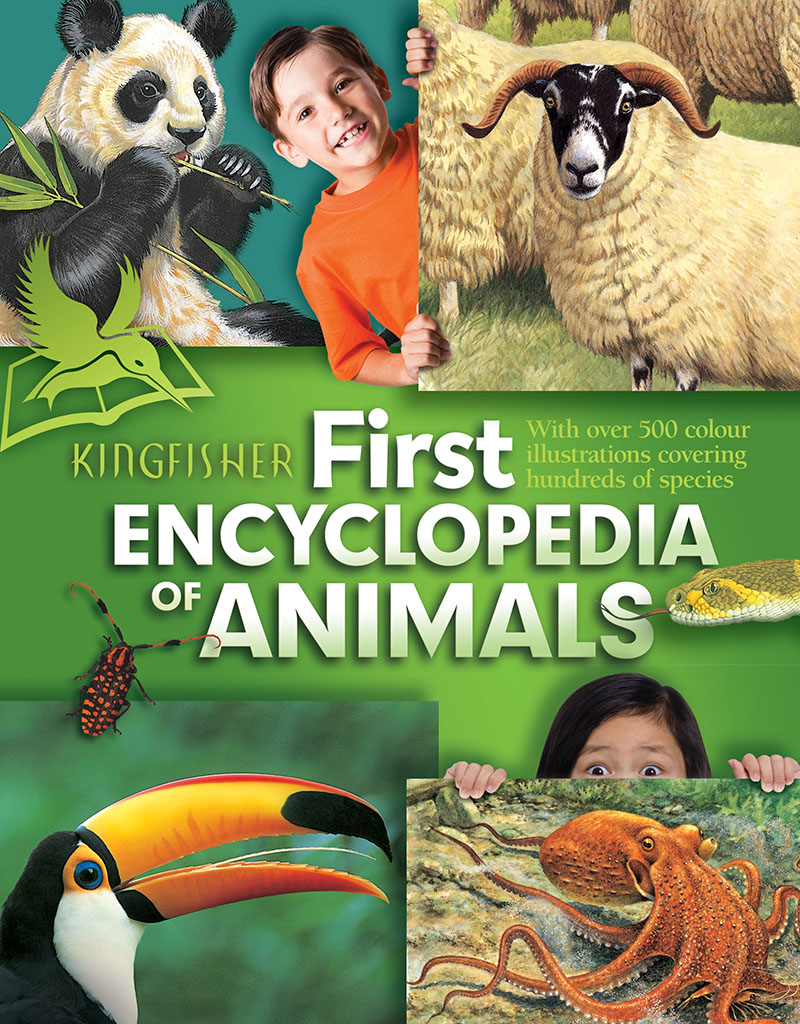 Kingfisher First Encyclopedia of Animals - Jacket