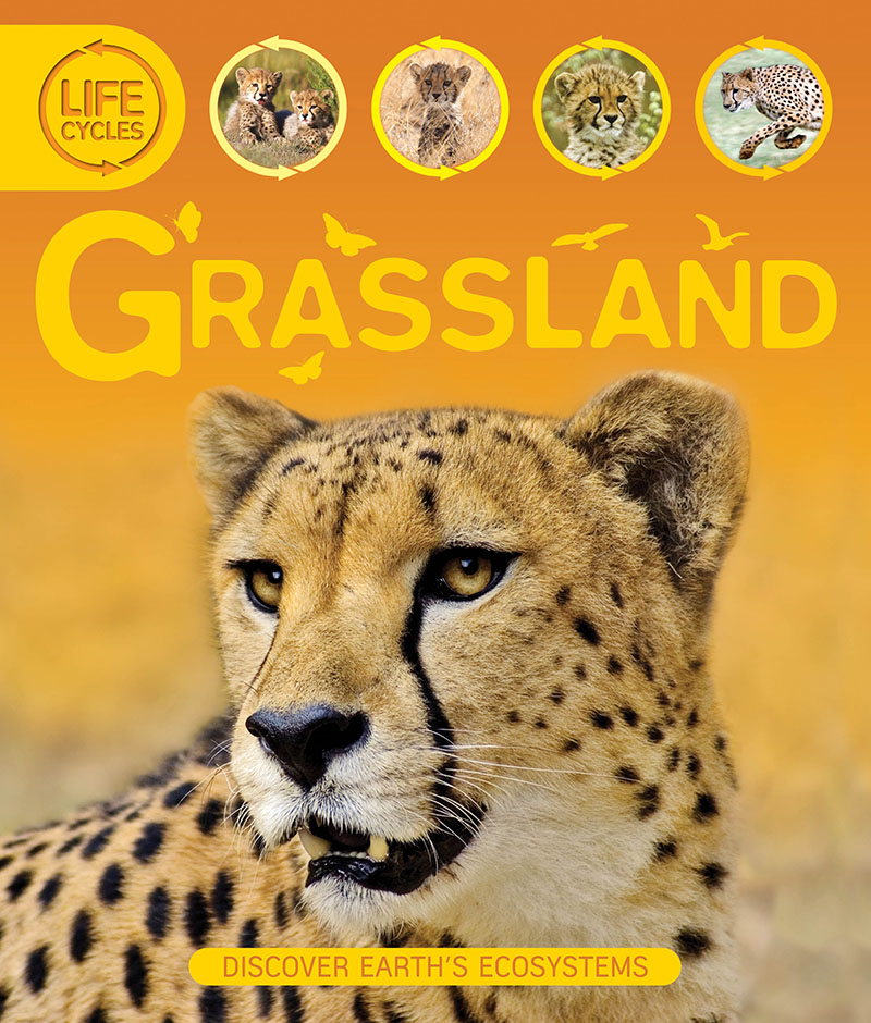 Life Cycles: Grassland - Jacket