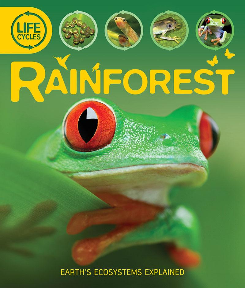 Life Cycles: Rainforest - Jacket
