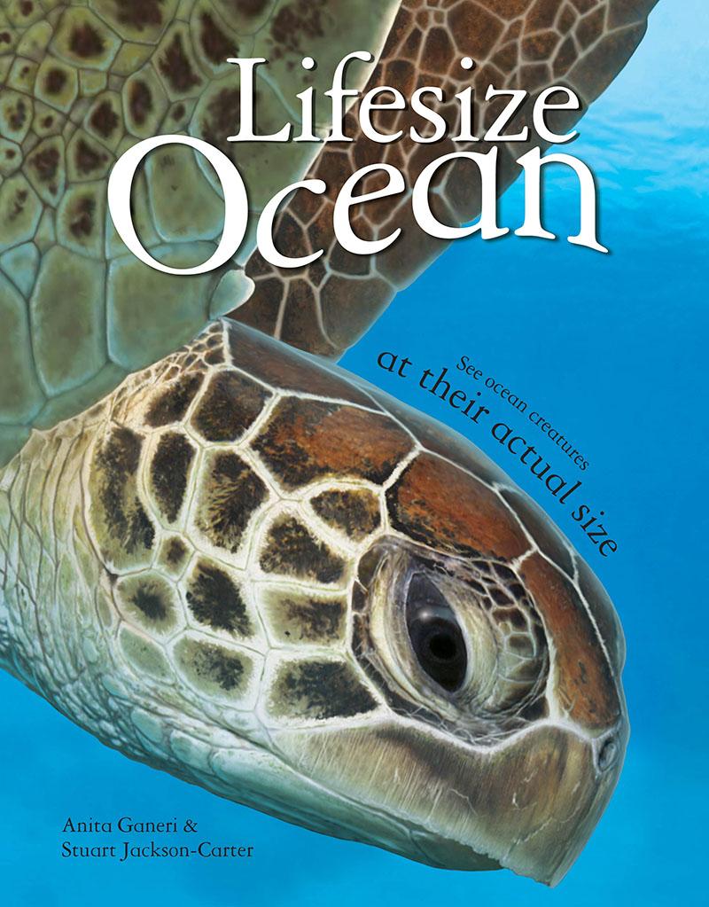 Lifesize Ocean - Jacket