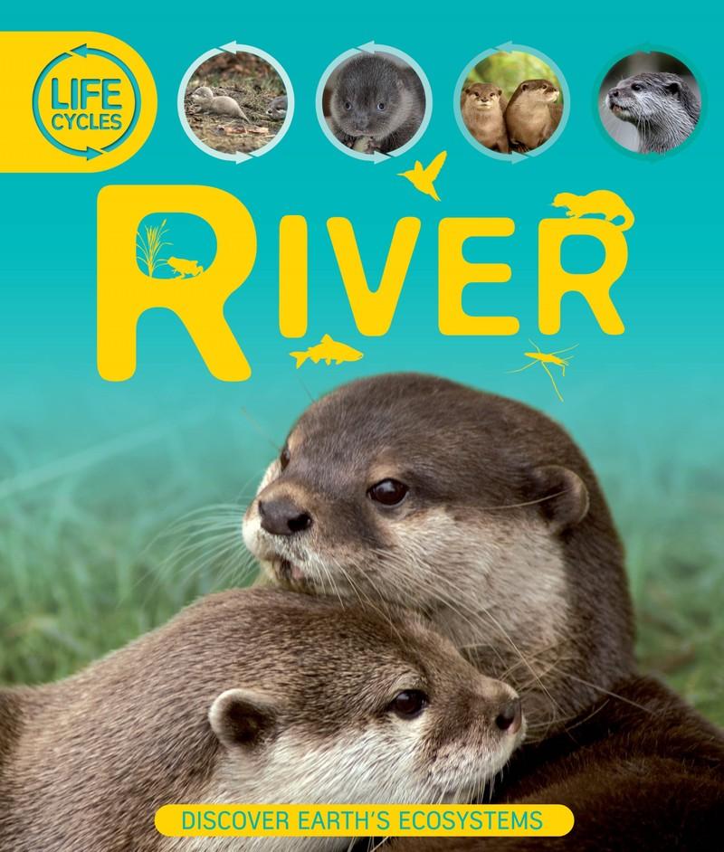 Life Cycles: River - Jacket