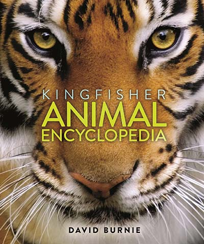 The Kingfisher Animal Encyclopedia - Jacket