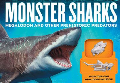 Monster Sharks - Jacket