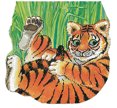 Pocket Tiger - Jacket