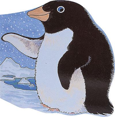 Pocket Penguin - Jacket
