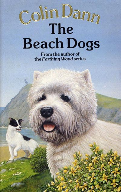 The Beach Dogs - Jacket