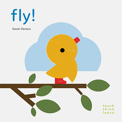 TouchThinkLearn: Fly! - Jacket
