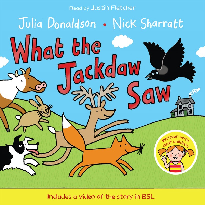 What the Jackdaw Saw - Jacket