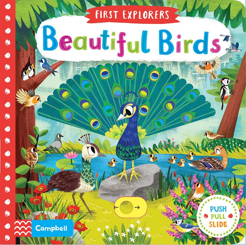 Beautiful Birds - Jacket