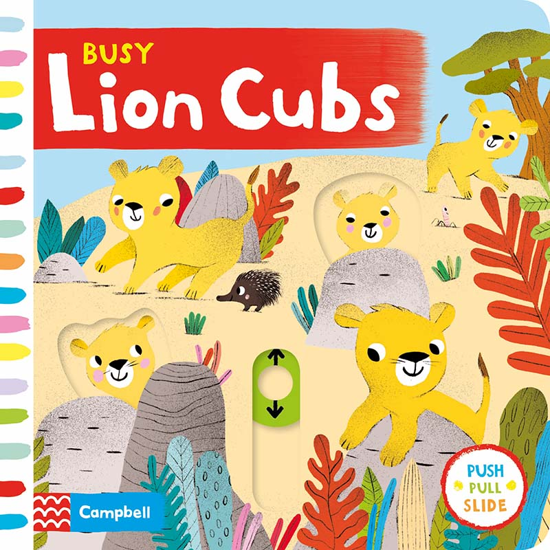 Busy Lion Cubs - Jacket