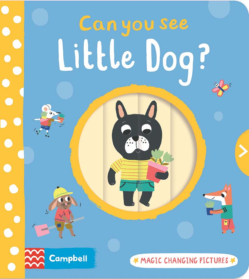 Can You See Little Dog? - Jacket