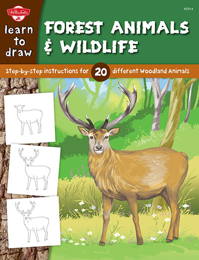 Learn to Draw Forest Animals & Wildlife - Jacket