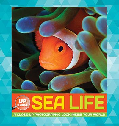 Sea Life - Jacket
