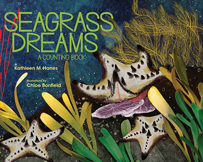 Seagrass Dreams - Jacket