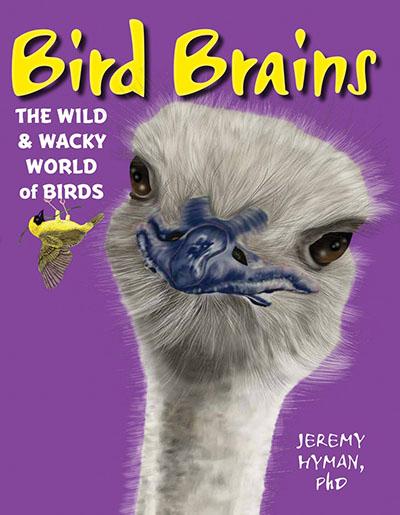 Bird Brains - Jacket