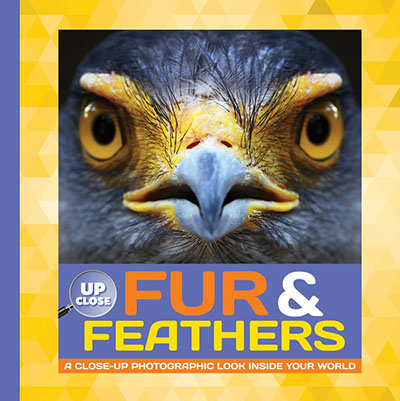 Fur & Feathers - Jacket