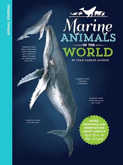 Animal Journal: Marine Animals of the World - Jacket