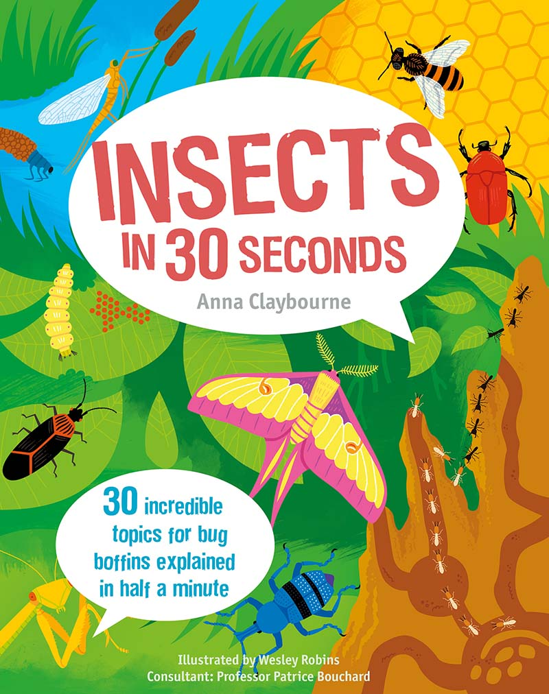 Insects in 30 Seconds - Jacket