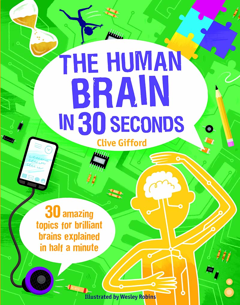 The  Human Brain in 30 Seconds - Jacket