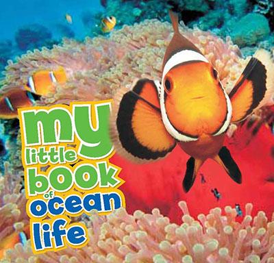 My Little Book of Ocean Life - Jacket