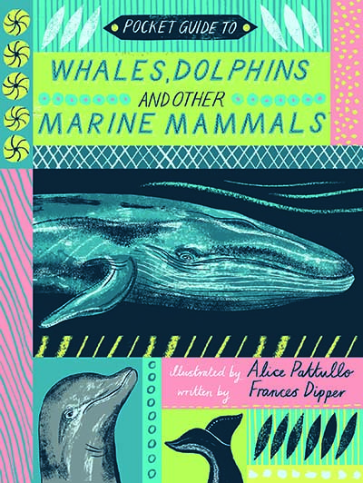 Pocket Guide to Whales, Dolphins and other Marine Mammals - Jacket