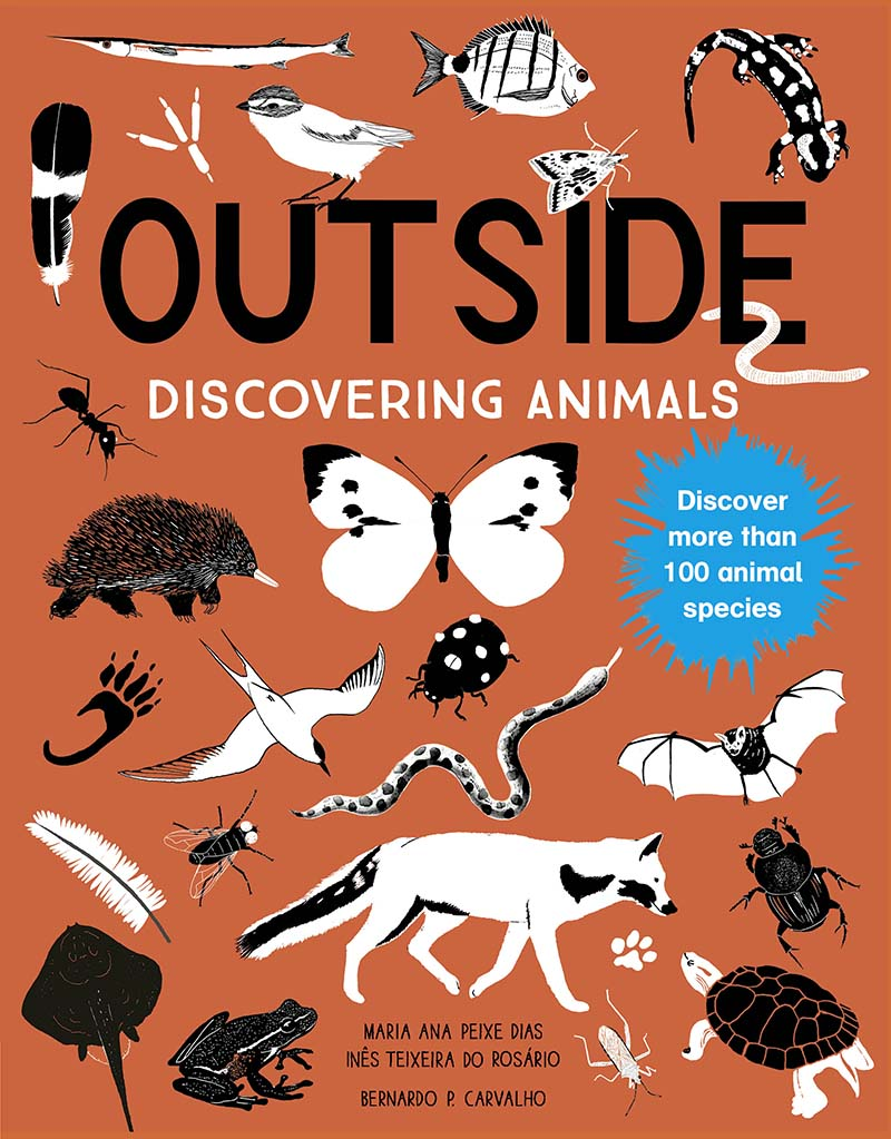 Outside: Discovering Animals - Jacket