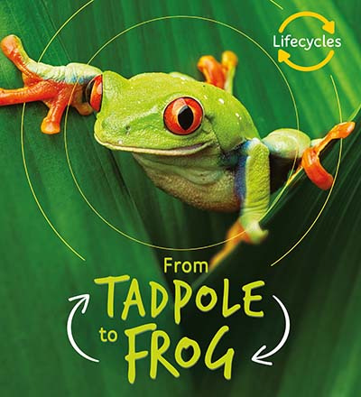 Lifecycles: Tadpole to Frog - Jacket