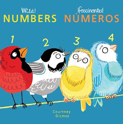 Numbers/Numeros - Jacket