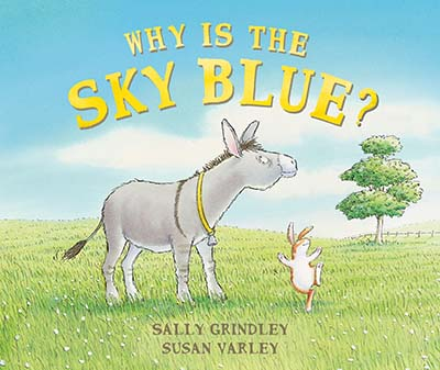 Why Is The Sky Blue? - Jacket
