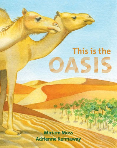 This is the Oasis - Jacket