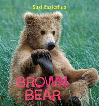 Brown Bear - Jacket