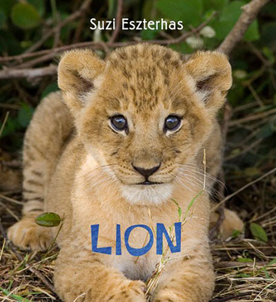 Lion - Jacket