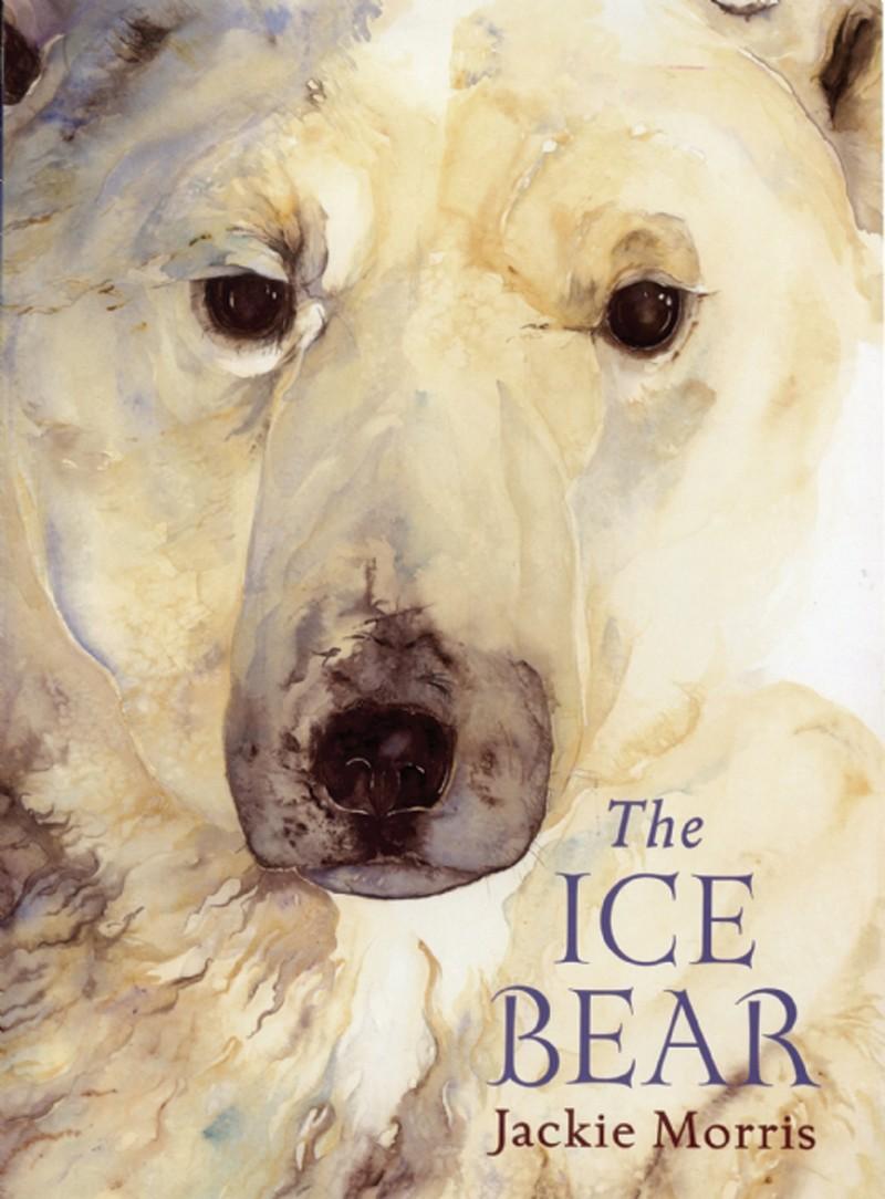 The  Ice Bear - Jacket
