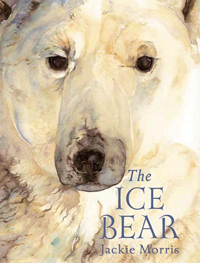 The  Ice Bear Mini Edition - Jacket