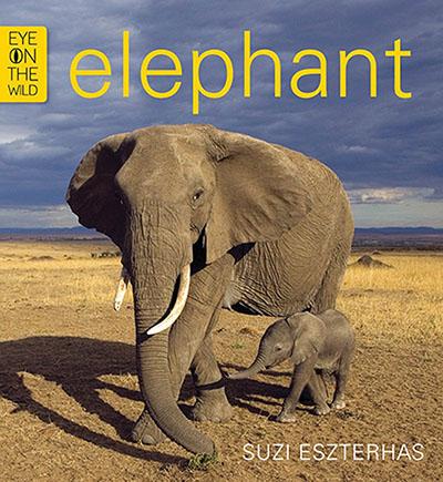 Elephant - Jacket