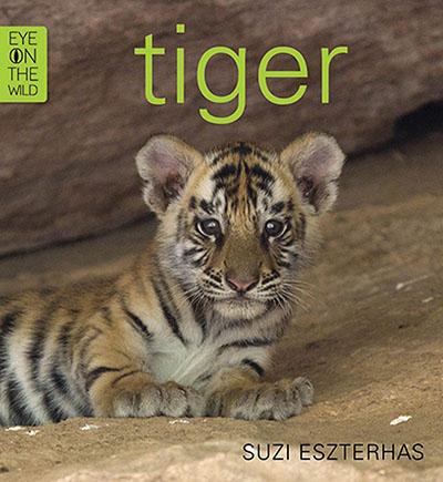 Tiger - Jacket