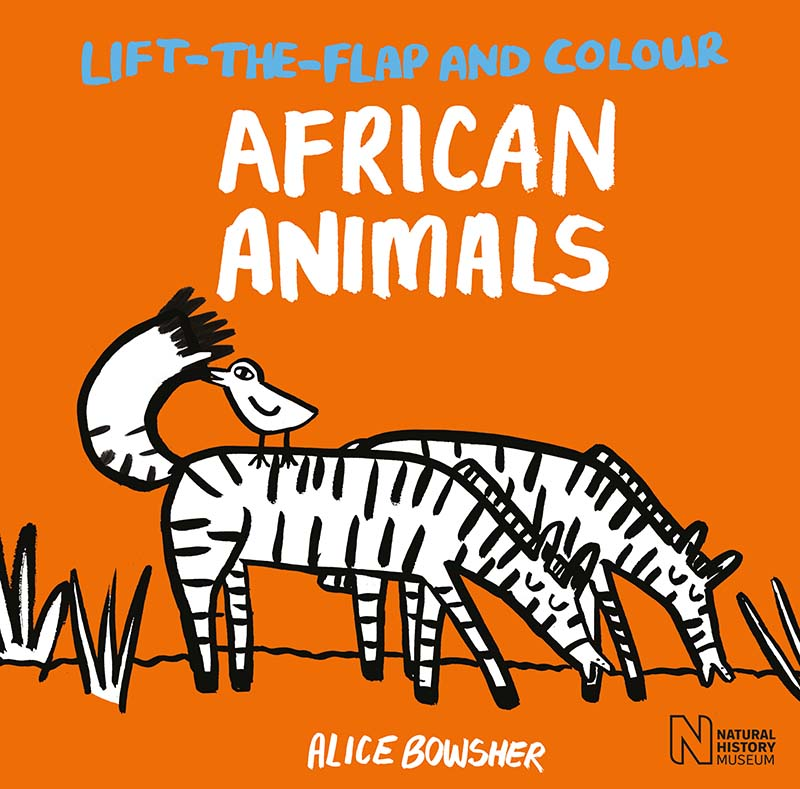 Lift-the-flap and Colour African Animals - Jacket