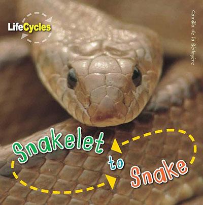 Snakelet to Snake - Jacket