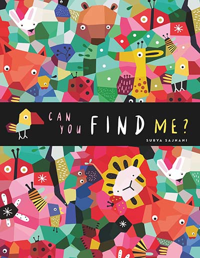 Can You Find Me? - Jacket
